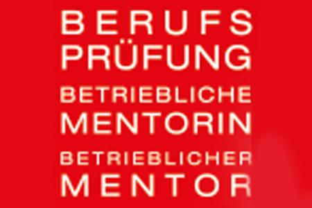 Berufsprüfung Betrieblicher Mentor